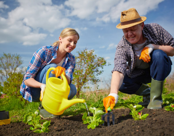 Image of couple of farmers seedling and watering sprouts in the garden